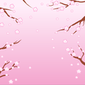 BlossomBackground.png